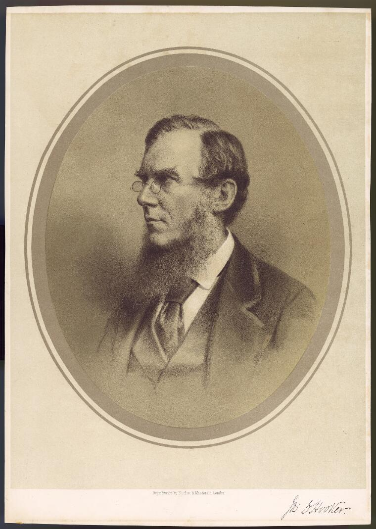 [Reproduction of a portrait of Sir Joseph Dalton Hooker, director of Kew Gardens] [picture]