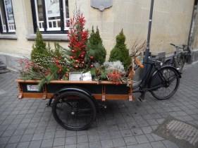 Santa's bike??