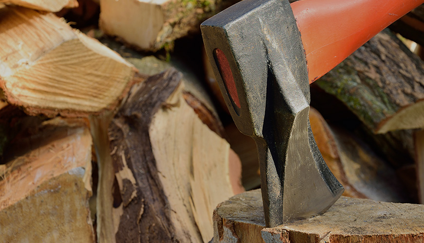 Domestic Wood Cutting Permits Available
