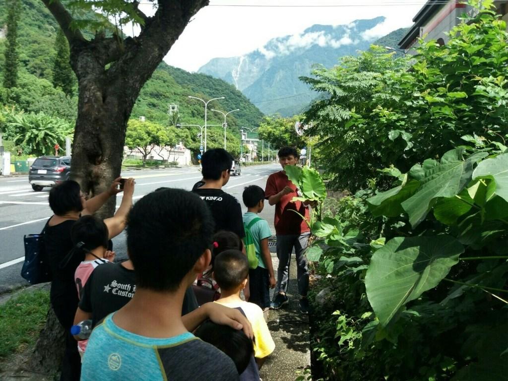1080817暑期生態小達人志工營隊研習~生態環境教育學習_190820_0003