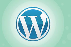 WordPress CMS Development