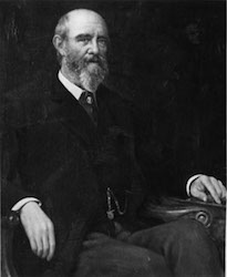 Sir Anthony Musgrave  (1828-1888)