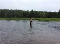 studying wetlands means gettign wet