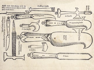 Woodcut illustrations of a variety of 16th century horticultural tools.