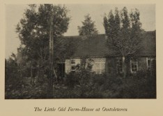 A photograph of a low house with a peaked roof surrounded by trees and shrubs.