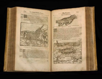Open view of book featuring unicorns and sea creatures.
