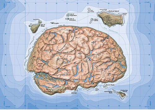 Unit Seven's map of the brain
