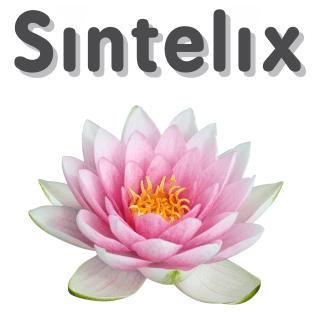 Sintelix