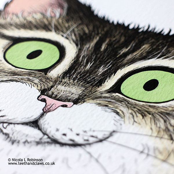 Green eyed tabby cat illustration © Nicola L Robinson www.teethandclaws.co.uk Cat art print