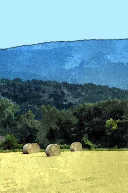 Sketched 3 hay bales c-002 gall