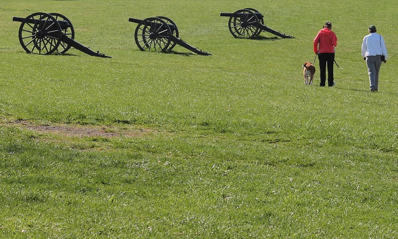 IMG_2362-001 gall cannons bull run
