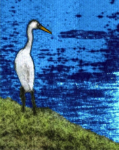 IMG_4453 tall water bird gall