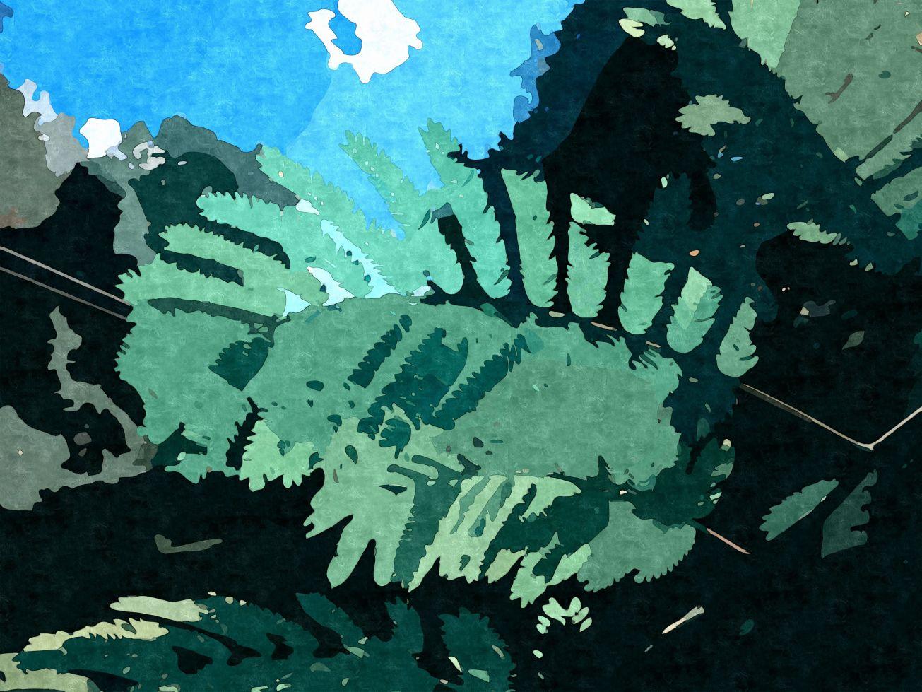 Sketched img 4640 creekside ferns d gall.jpg