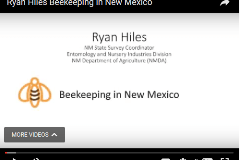 Ryan Hiles- Beekeeping in New Mexico, 2017