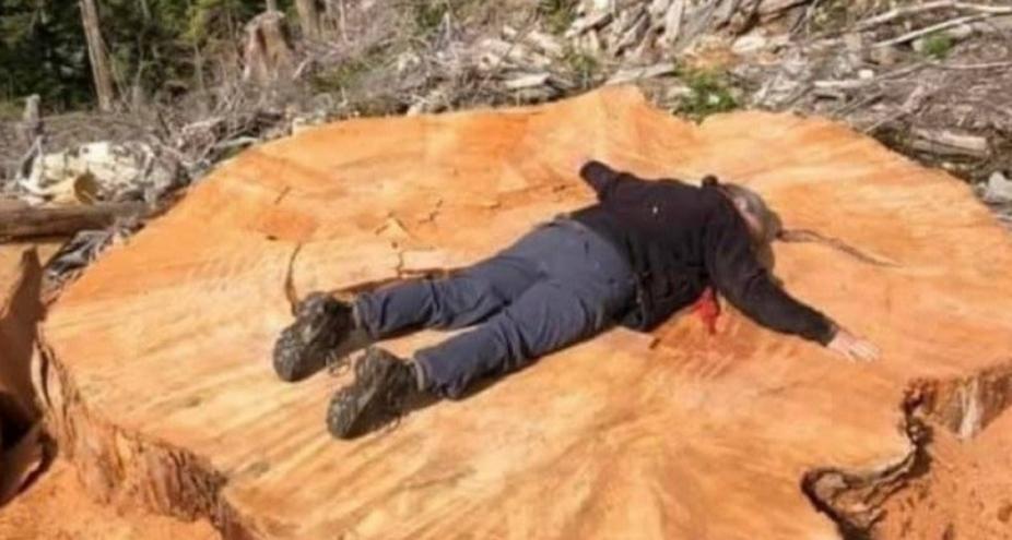 Druri 100 vjeçar shkon në furrë për ngrohje