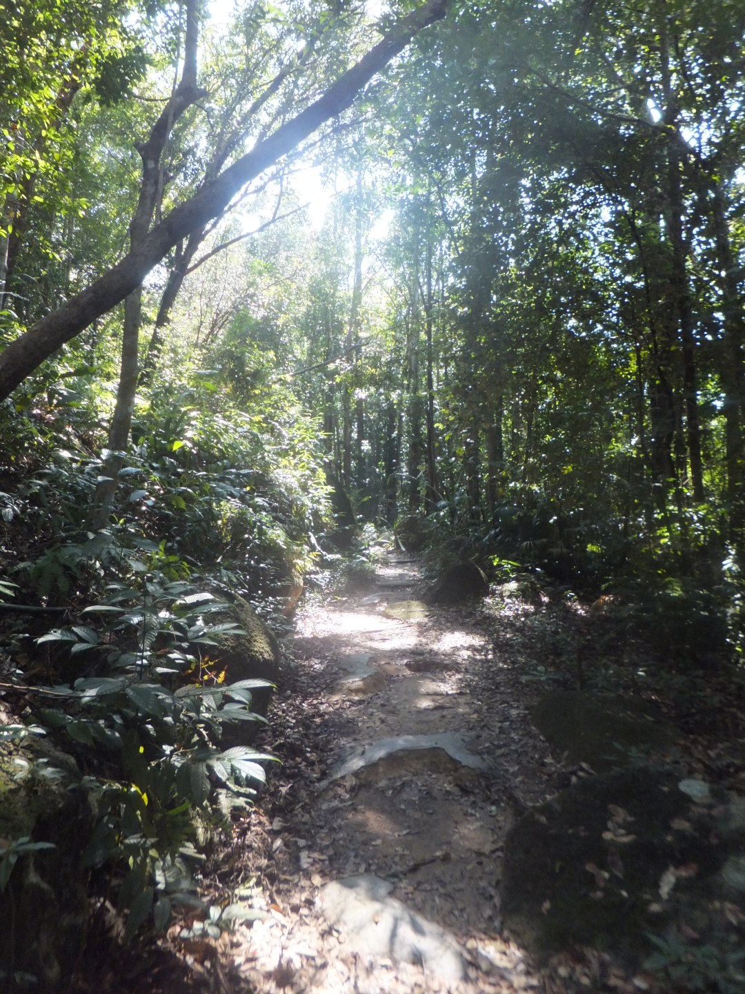 Backpackers in Malaysia