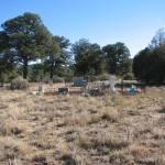Cedar Grove Cemetery, Rio Arriba County, New Mexico
