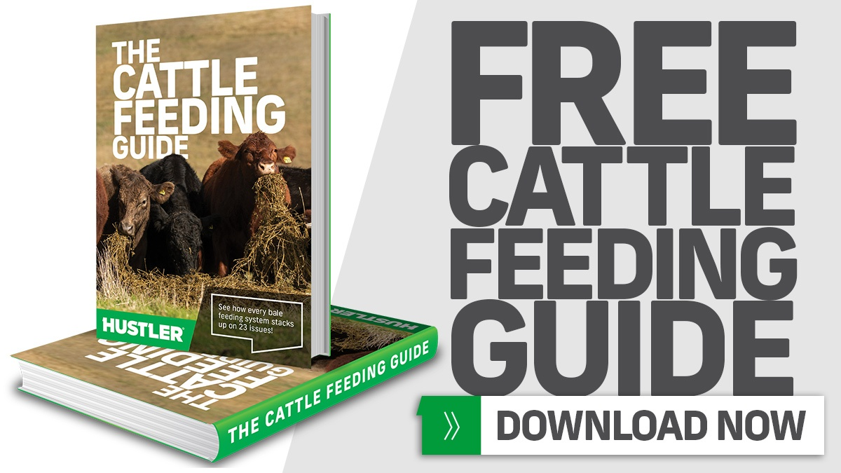 Free Cattle Feeding Guide - Download now for FREE