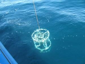 CTD submerging