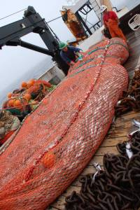 Boatswain Matt Faber, and Skilled Fisherman, Gary Cooper, tend to full net of hake from one of the day's trawl.