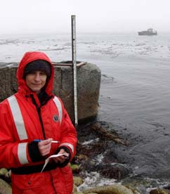 Here I am collecting data from the tide staff on Herendeen Island. You can see the excess seaweed throughout the water and near the shore.  This factor proved to be a troublesome variable in the initial stages of data collection.