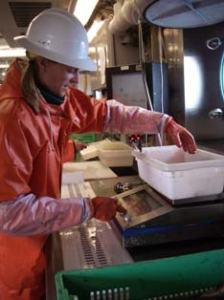 Scientist Sarah Stienessen weighs a sample.