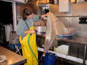 Amy Pearson hosing down plankton net