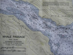 You can see part of the route that the navigator has mapped out for the ship.