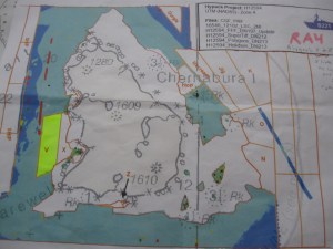 To the left of Chernabura Island you can see the two polygons (V and X)  we were responsible for surveying.
