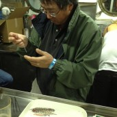 Our chief scientist, Dr. Don Kobayashi, examines a specimen after a trawl.