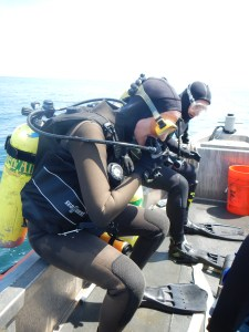 Sarah and Jared prepare to dive after spotting a hammerhead shark.