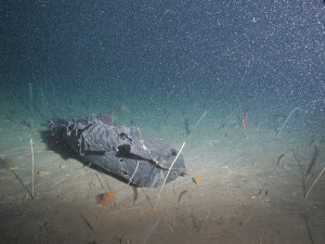 Black plastic garbage bag found at about 60 meters.  NOAA UNCW. Mowak ROV June 2014.
