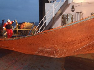 Trawl net with cam trawl attached being deployed to fish