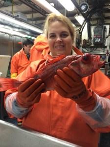 I'm holding the Rockfish