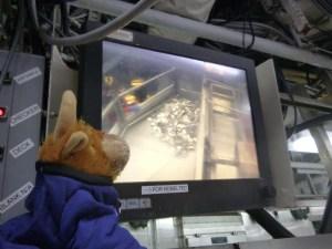 Toro analyzing the catch via the checker cam.