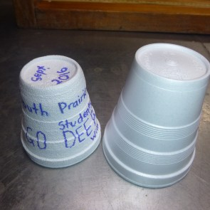 Styrofoam cup comparison