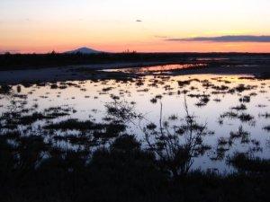 A typical desert sunset over Bitter Lake National Wildlife Refuge near Roswell, NM