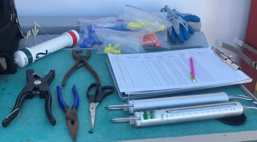 Various tools are spread out and used to weigh (scale), collect samples (scissors and vials), remove hooks (pliers, plus other instruments not pictured), apply tags (leather punch, piercing implement, and tags), and record data (clipboard and data sheet).