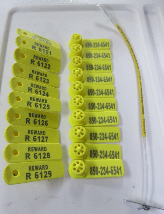 Two kinds of shark tags: plastic swivel tags used for smaller sharks and dart tags used for larger sharks.