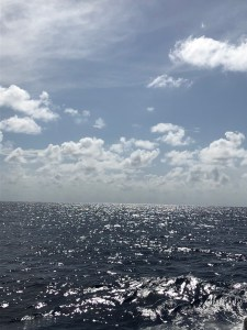 A view of the horizon