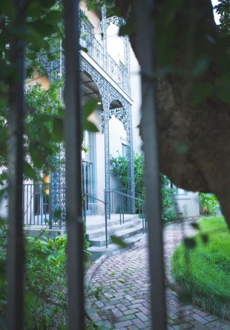 The garden at 807 Esplanade