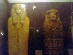 Horniman museum (4)