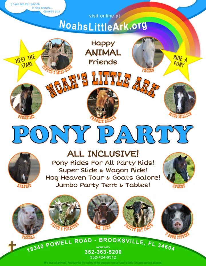 Noahs Little Ark Pony Party