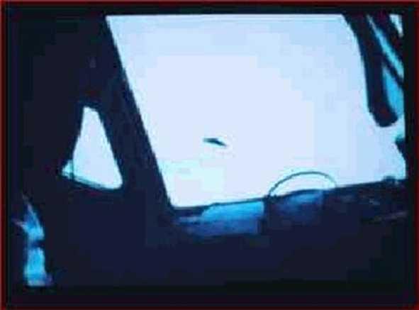 """Sem contar, é claro, os sempre presentes e enigmáticos UFOs e os seus tripulantes que parecem nutrir uma especial preferência por aquelas selvas, onde aliás sabe-se que possuem mesmo algumas bases. Esta foto foi tomada de bordo de um avião comercial da VARIG (uma das maiores empresas aéreas do Brasil) em 1976 quando, por sobre a Floresta Amazônica, fazia a rota Belém-Manaus. Toda a tripulação, bem como todos os passageiros, testemunharam as evoluções do objeto acompanhando por algum tempo a trajetória da aeronave! E você sabia que os órgãos de inteligência e informações dos EUA sabem e possivelmente monitoram essas atividades no local e que inclusive usam o codinome """"FADAS"""" para classificar os supostos alienígenas que os tripulam na Região Amazônica? Conforme já sabemos, um tipo nada convencional de """"Fadas"""" que, na melhor das hipóteses, pode ser potencialmente perigoso....."""