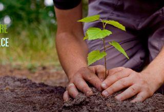 Voluntários Verdes Preencha se você estiver interessado em entrar na nossa lista de voluntários verdes http://lbcr.tv/1Uc0S0Z
