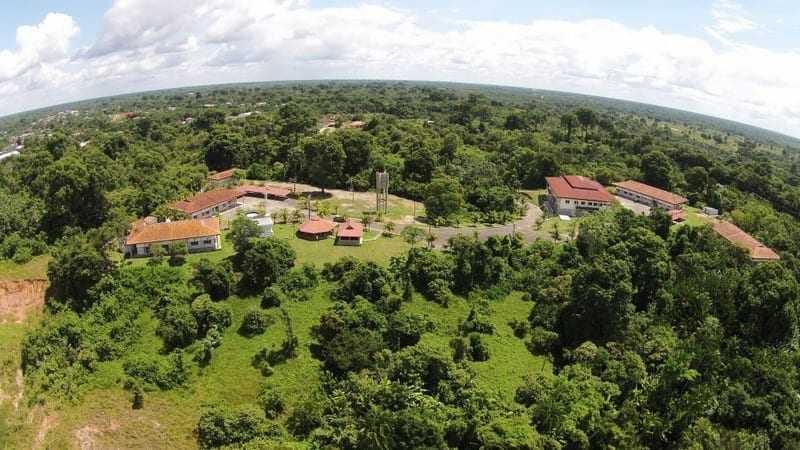 Instituto Mamirauá, em Tefé (Foto: M/Divulgação)