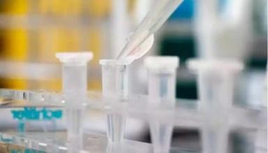 A biofarmacêutica conseguiu a designação de %u201Cfast track%u201D à sua vacina (foto: Joe Klamar/AFP)