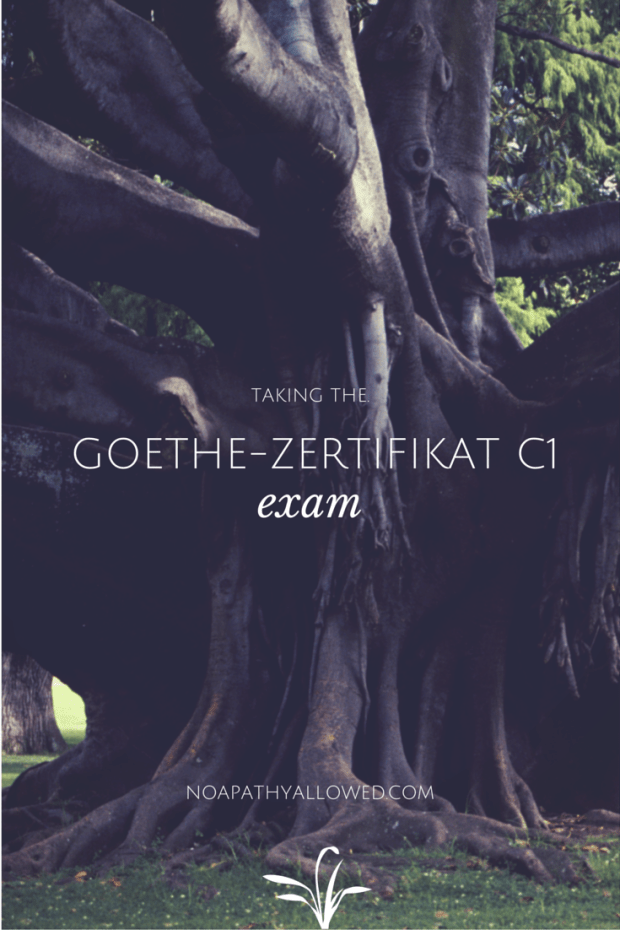 Taking the Goethe-Zertifikat C1 exam | No Apathy Allowed
