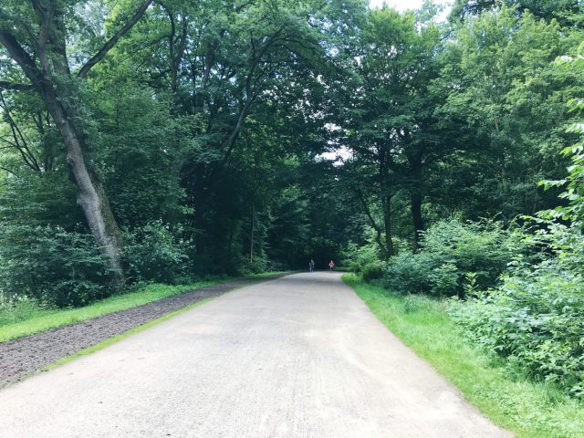 Berlin Marathon: Training Week 7 | No Apathy Allowed