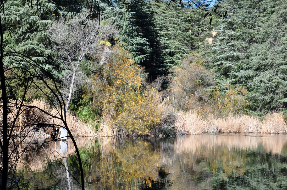 5 Easy Hikes For Toddlers Los Angeles